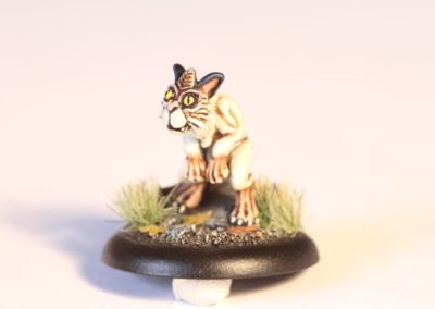 Luxcelot Kitten 2